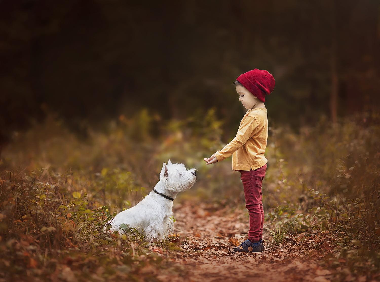 sedinta-foto-de-familie-copii-in-natura-bucuresti-madalina-vasile-fotograf